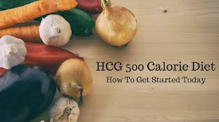 Menu Diet Dengan 500 – 600 Kalori
