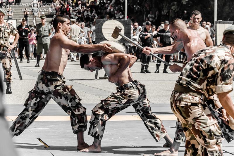 موسوعة الصور الرائعة للقوات الخاصة الجزائرية - صفحة 62 IMG_5589