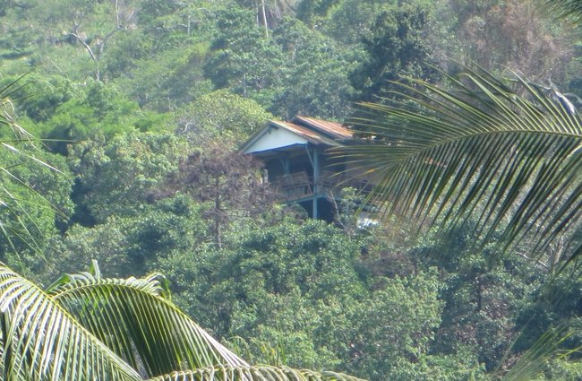 маленький деревянный дом на горе