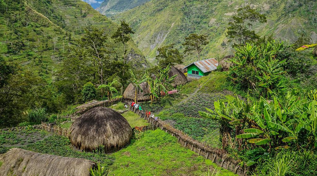 wisata sejarah di indonesia di papua lembah baliyem