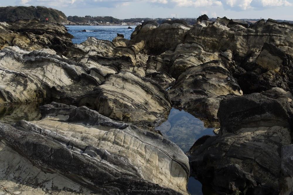荒崎海岸 三浦半島
