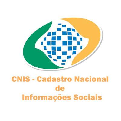 Consulta CNIS pela internet