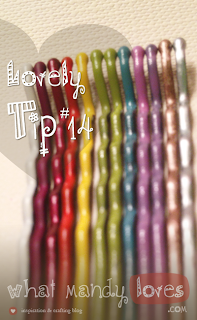 Tip #14: Painted Hair Pins via www.whatmandyloves.com