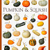 Pumpkin & Squash Varieties Chart