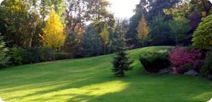 Ezta kertet a Pro Natura Kert tervezte