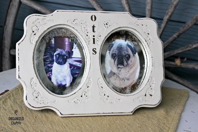 Transform a Goodwill Frame to a Pet Memorial organizedclutter.net