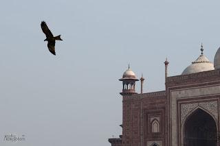 Viaje_India_TajMahal