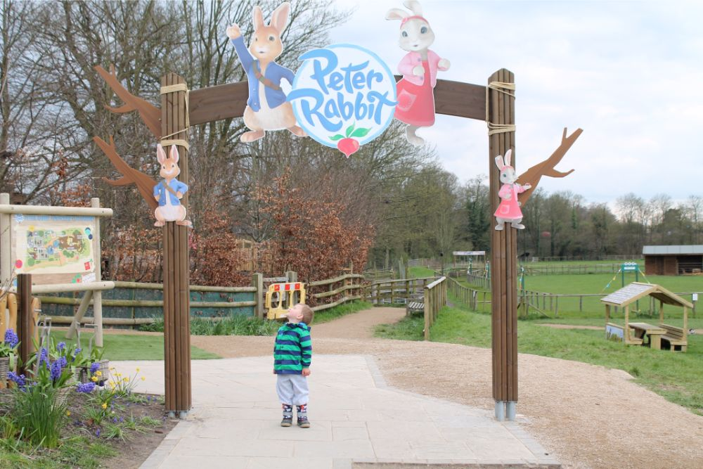 boy-standing-under-peter-rabbit-sign