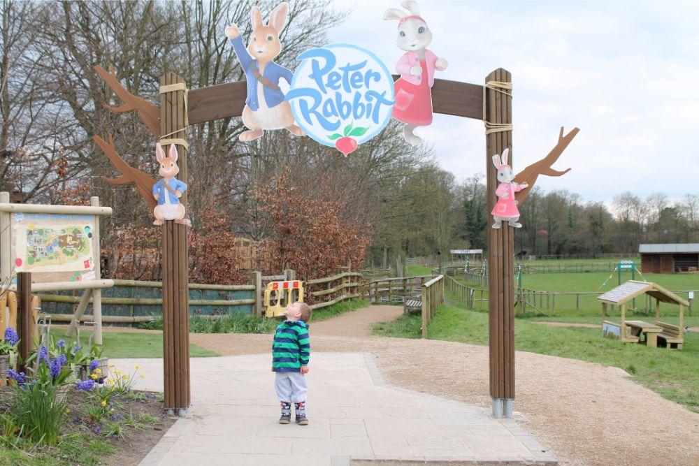 boy-standing-under-peter-rabbit-sign