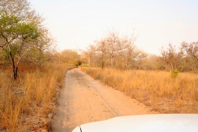 unterwegs-auf-mosambiks-strassen