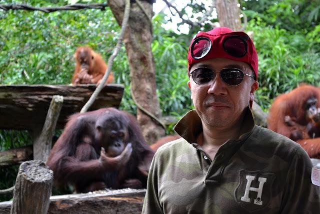 シンガポール動物園のジャングル ブレークファースト
