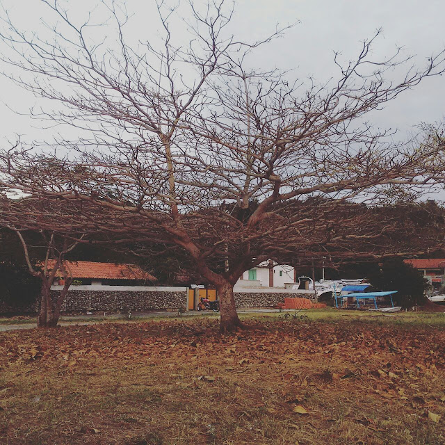 Inverno, Luciana Ravaglia, Dia de inverno, fotografia