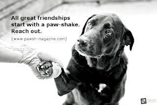 Image result for quotes on big dogs