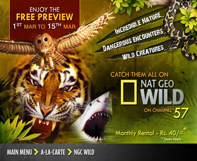 PEO TV: Nat Geo Wild launched