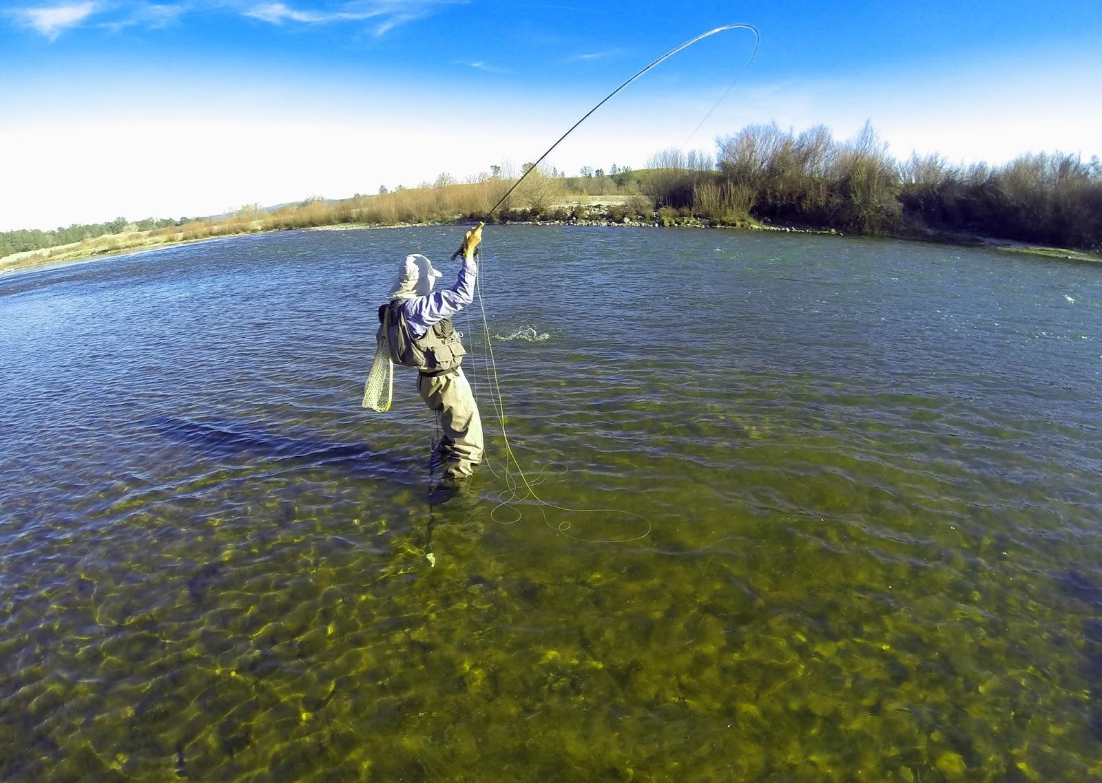 Jon Baiocchi Fly Fishing News California Fly Fishers