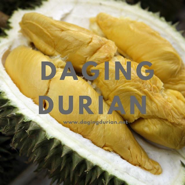 agen-daging-durian-medan-terharum-di-lhoksukon