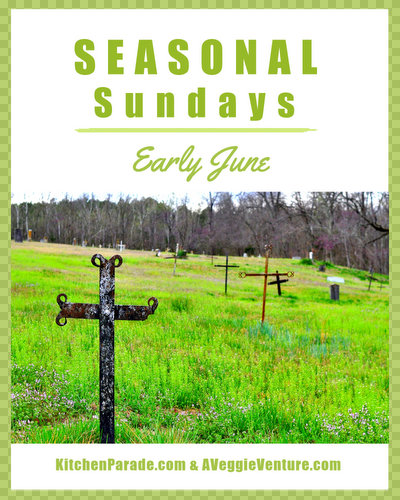 Seasonal Sundays ♥ KitchenParade.com, a seasonal collection of recipes and life ideas in and out of the kitchen.