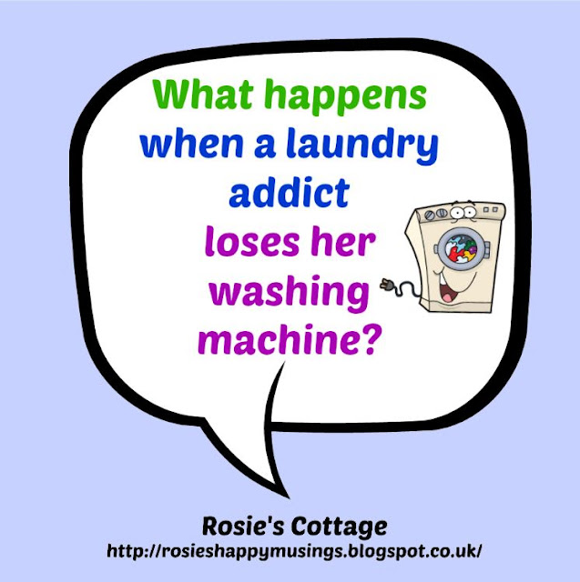 What Happens When A Laundry Addict Loses Her washing Machine...
