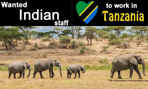 Jobs in Tanzania for Indians