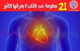 21 معلومة عن القلب لا يعرفها الكثير