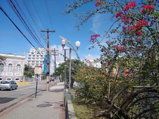 Fotografia colorida. Vista parcial da rua do Sol, com buganvílias floridas de vermelho na beira do rio, à direita, e do lado oposto, parte do edifício onde funcionou o Liceu de Artes e Ofíciios, em rosa e branco, e outras edificações. Ao fundo, o céu azul.
