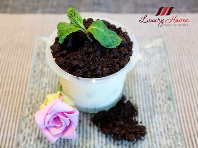 valentines day flowers potted plant foodart recipe
