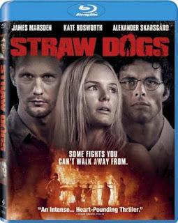 Straw Dogs (2011) BluRay 480p 350MB Dual Audio ( Hindi - English ) ESubs MKV