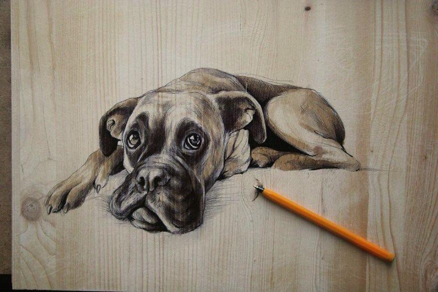 04-Dog-pen-00-Martina-Billi-Recycled-Wooden-Planks-Used-to-Draw-Animals-www-designstack-co
