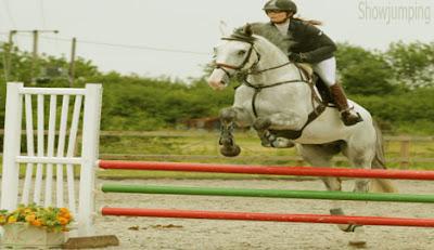 Showjumping sport