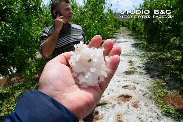 Ερώτηση βουλευτών του ΚΚΕ για τις αποζημιώσεις από τις καταστροφές στις καλλιέργειες από το χαλάζι σε Αρκαδία – Αργολίδα