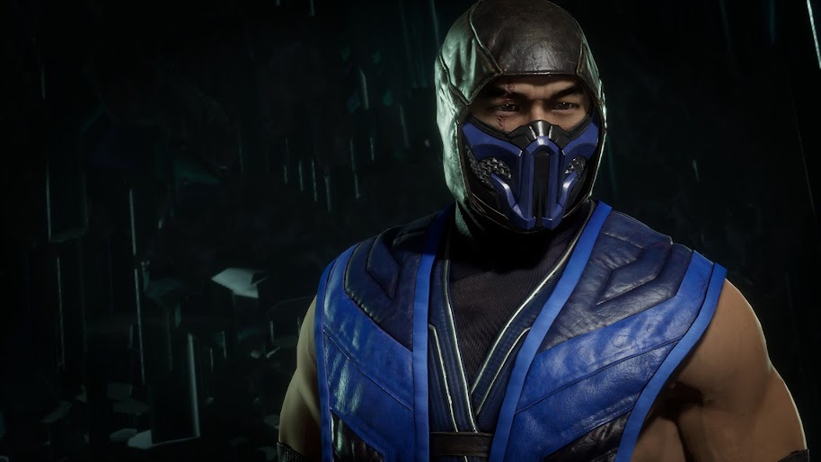 Sub Zero Mortal Kombat 11 4k Wallpaper 279