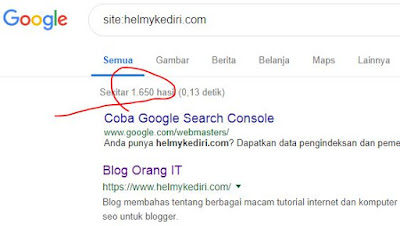 cek jumlah index blog