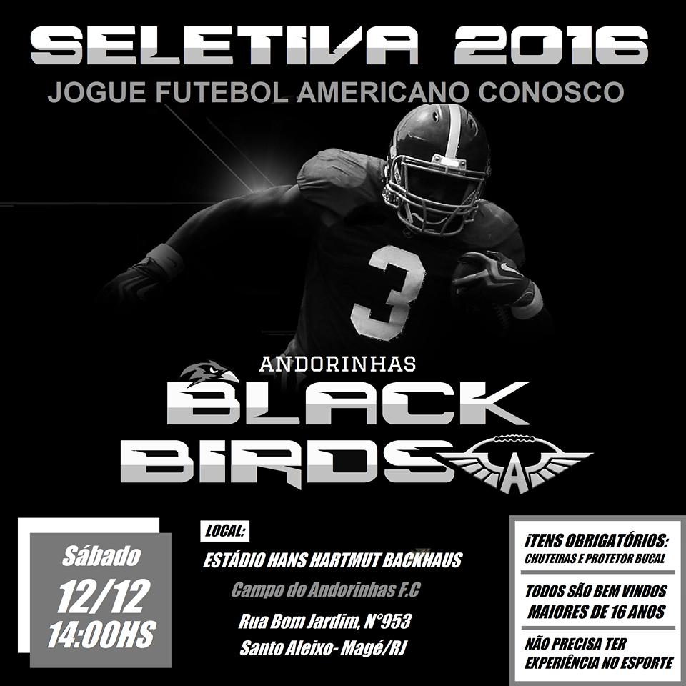 5b3eaa316e Andorinhas BlackBirds promove seletiva de fim de ano já visando a LiFFA  Full-Pads em 2016