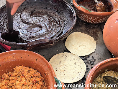 Mole Michoacano de la Región del Lago de Pátzcuaro, elaborado en Opongio