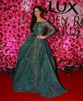 [Image: Celebs-at-Lux-Golden-Rose-Awards-2016-Photos-10.jpg]