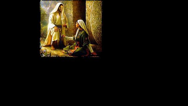 Resultado de imagem para jugo com jesus é leve evangelho segundo espiritismos