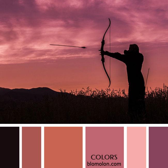 variedad_en_color_paletas_colores_2a
