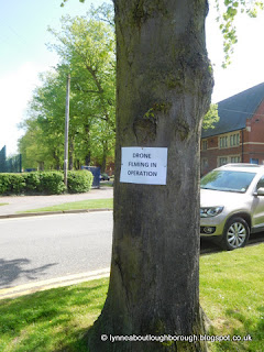 Drone warning pinned to a tree