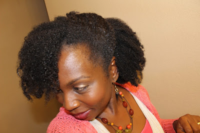 Natural Hair Wash Day Routine for Busy Mom feat. Afroshe  DiscoveringNatural