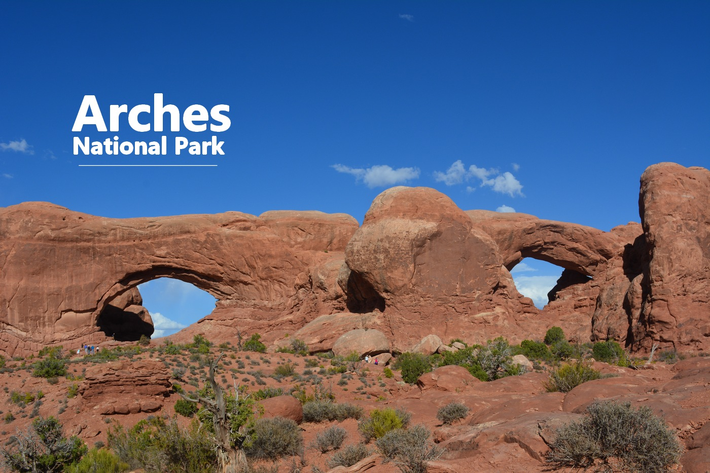 Double windows Arches National Park
