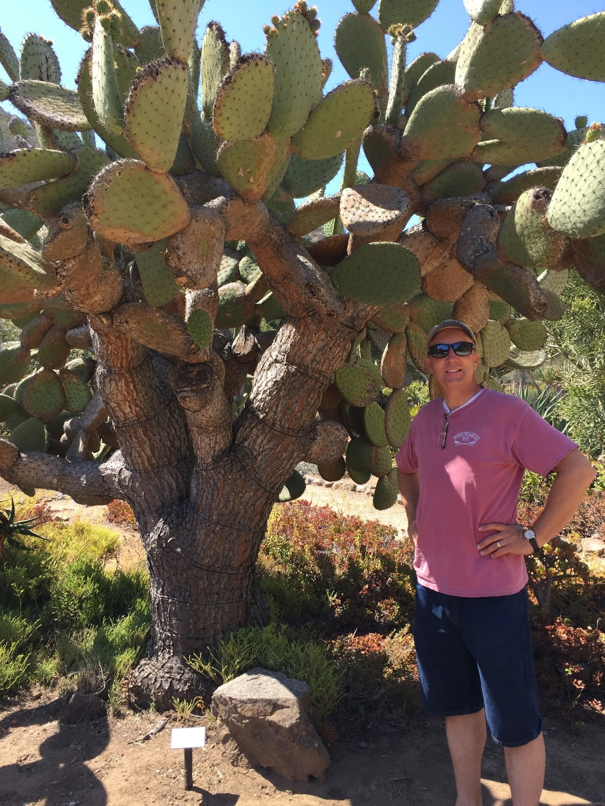 Rick and Janell\'s News: California Trip/Hafen Reunion