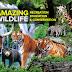 7 Tips Bawa Anak ke Zoo Melaka