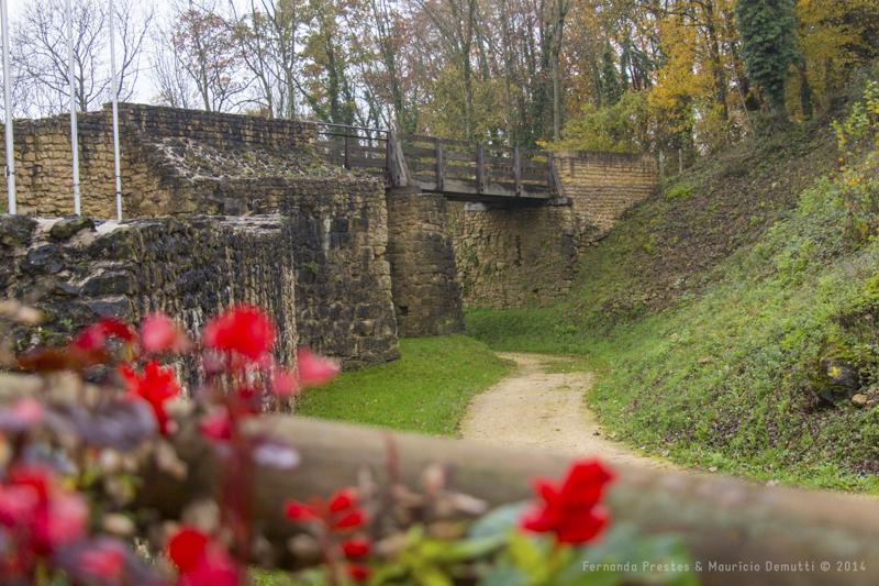 flores vermelhas e ponte