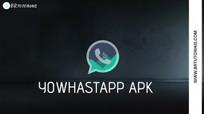 YoWhatsapp Apk Atualizado - Download Grátis 2018 - br tutoriais