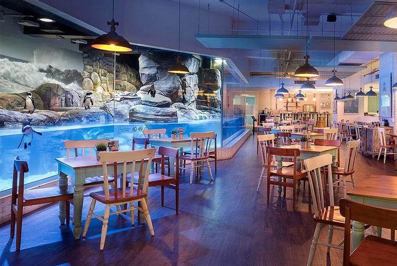 Restoran Pingoo (nibble.id)