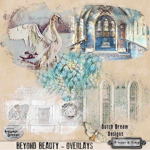 Beyond Beauty overlays