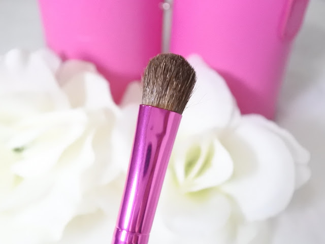 Review Zoya Brush Set