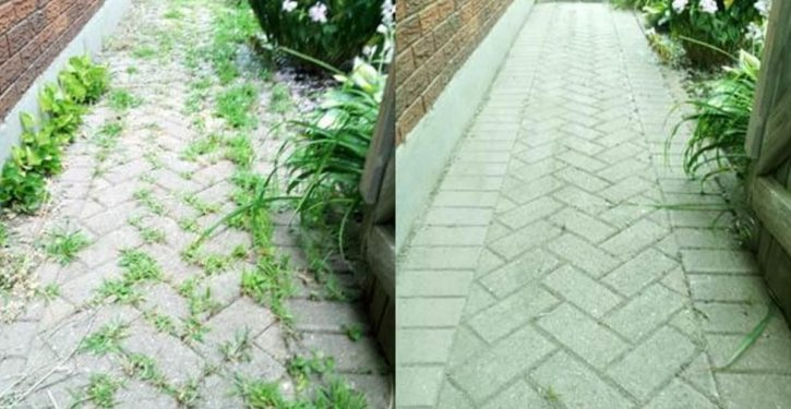 Say Goodbye To Weeds With This 100% Natural Herbicide!