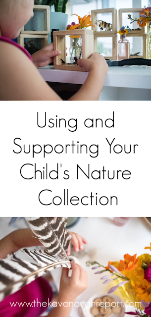 Supporting and Using your Child's Nature collection - easy science and nature discovery for your Montessori home