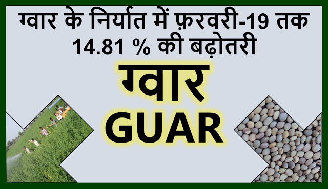 ग्वार के निर्यात में अप्रेल 2018 से फ़रवरी 2019 तक 14.81 % की बढ़ोतरी     Guar, guar gum, guar price, guar gum price, guar demand, guar gum demand, guar seed production, guar seed stock, guar seed consumption, guar gum cultivation, guar gum cultivation in india, Guar gum farming, guar gum export from india , guar seed export, guar gum export, guar gum farming, guar gum cultivation consultancy, today guar price, today guar gum price, ग्वार, ग्वार गम, ग्वार मांग, ग्वार गम निर्यात 2018-2019, ग्वार गम निर्यात -2019, ग्वार उत्पादन, ग्वार कीमत, ग्वार गम मांग, Guar Gum, Guar seed, guar , guar gum, guar gum export from india, guar gum export to USA, guar demand USA, guar future price, guar future demand, guar production 2019, guar gum demand 2019